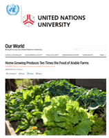 Link to Article in UNU Our World: Home Growing Produces Ten Times the Food of Arable Farms (click to read)